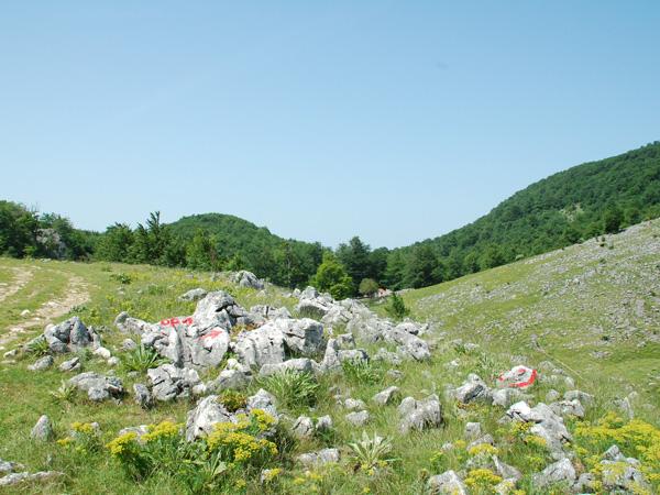 Žagubica - Mt. Beljanica ski resort